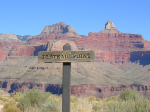 personal plateau